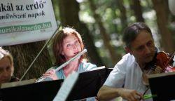 Fülek idén is csatlakozik a Muzsikál az erdő programsorozathoz