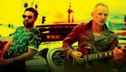 LEMEZ-MUTATÓ: Sting & Shaggy - 44/876